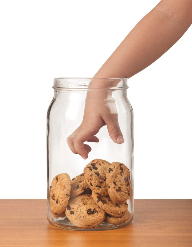 Capital Budgeting Is Essential Don T Raid The Cookie Jar